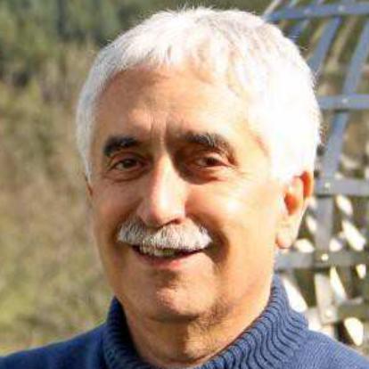 Nicola Bellomo | Science in the net