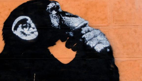 Juan Antonio Segal, We're Homo sapiens