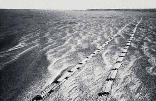 tracks of Opportunity probe on Mars (credit Nasa/Corbis)